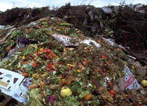 Desechos alimentarios