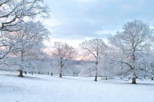 soluciones de energía verde invierno