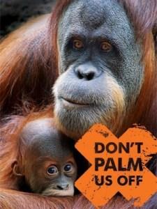 evitar el aceite de palma y salvar a los orangutanes