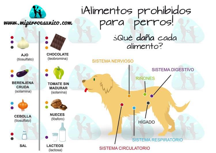 infografía alimentos peligrosos