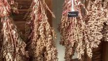 Beneficios para la salud de la quinua colgando para secar