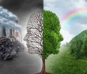 las responsabilidades del consumidor ayudan al medio ambiente