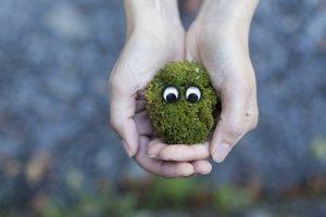 movimiento lento para proteger el planeta tierra