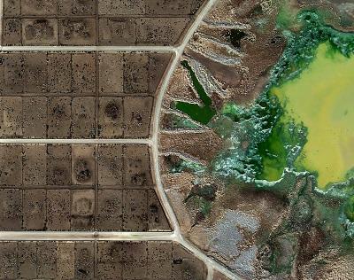Evite los alimentos de las granjas industriales para evitar el desperdicio.