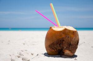Alimentos crudos de coco fresco natural